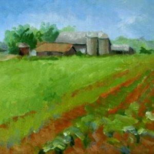 Farm on Coverbridge Road