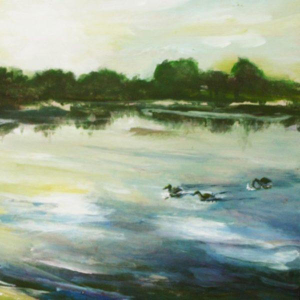 Sunrise with Ducks