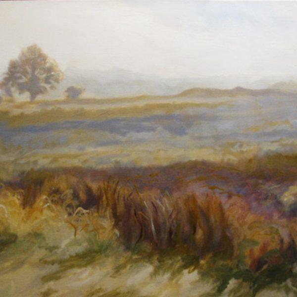 Field in the Mist