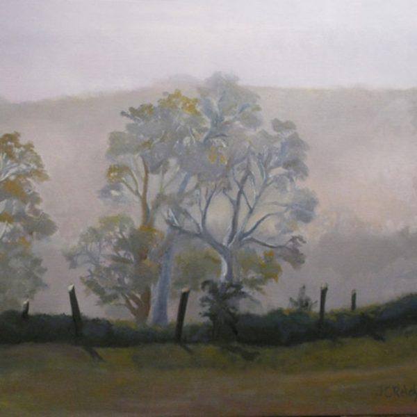 Trees in a Haze