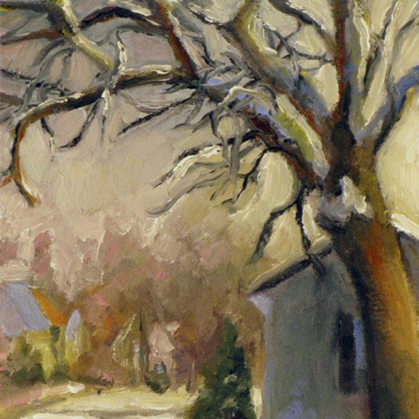 Ash Tree at Sunset