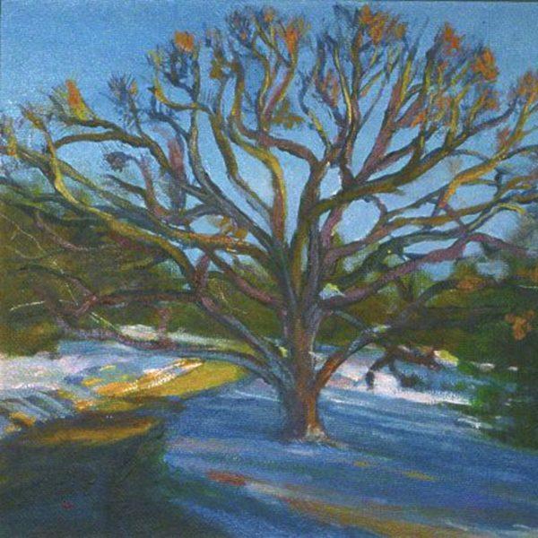 Winter Tree at Sunset