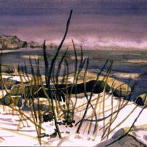 Snowy Rocky Shore