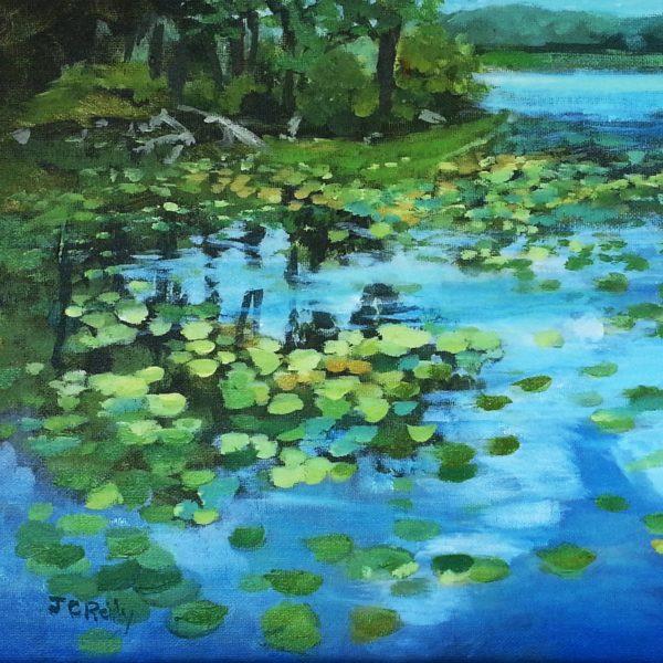 Vivian's Water Lilies
