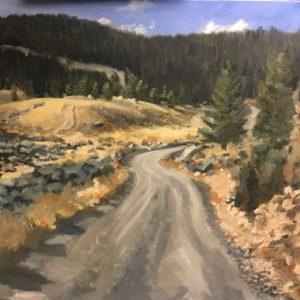 Torrey Lake Road