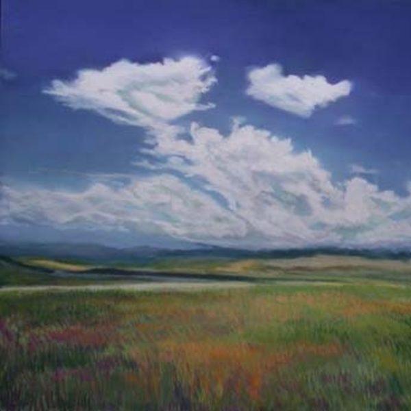 Plains of Pelamore